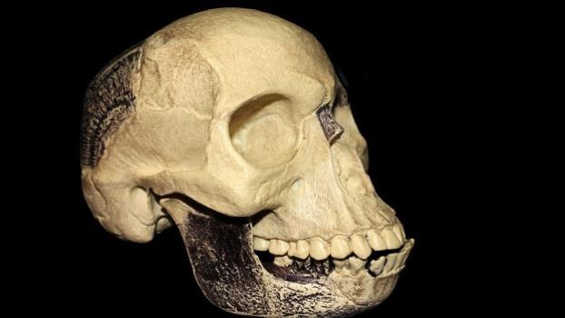 Пилтдаунският череп