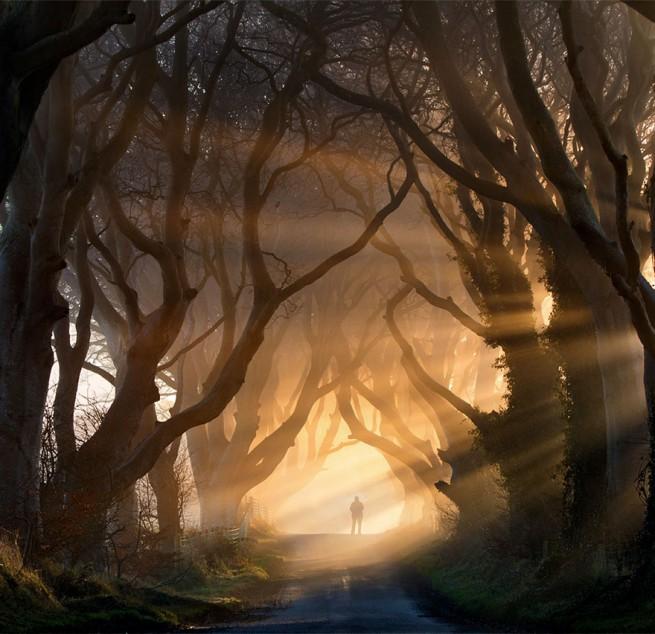 Дарк Хеджес в Северна Ирландия