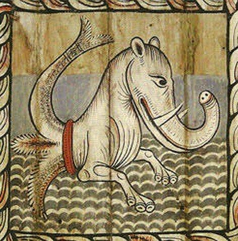 риба слон