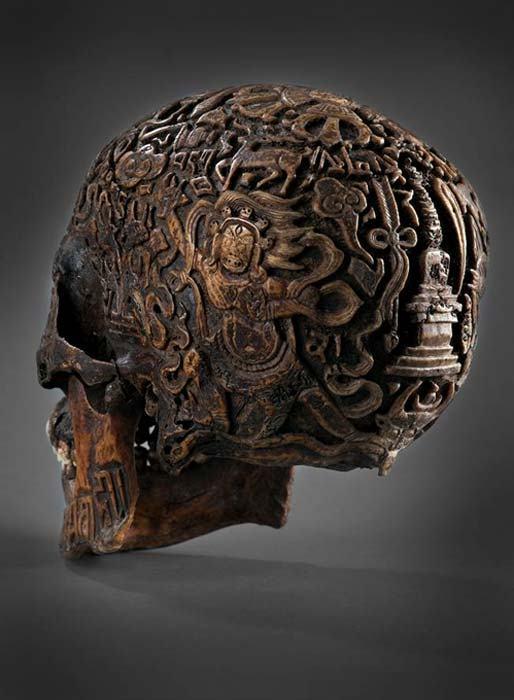 древен череп