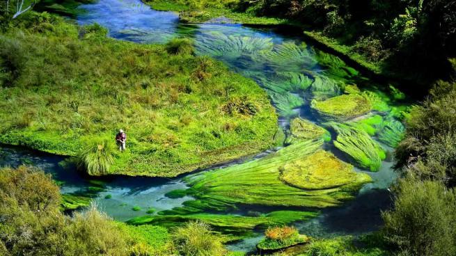 Те Вайхоу - кристална вода на 100 години